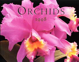 Orchid Calendar photos by judywhite
