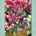 Tulips Bulbs Stock Images Calendar Cover by judywhite Flowers